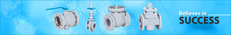 API-6D Valves, Swing Check Valves