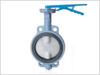 Butterfly Valves, BS-5155 Valves